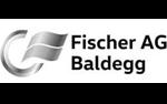fischer-baldegg